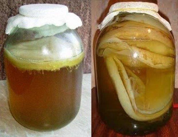 Напиток гриб в домашних условиях 115